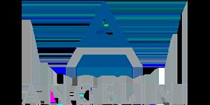 Angelini logo TCR BCN