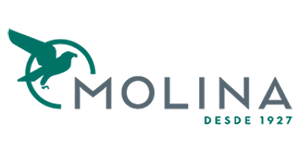 Molina logo TCR BCN